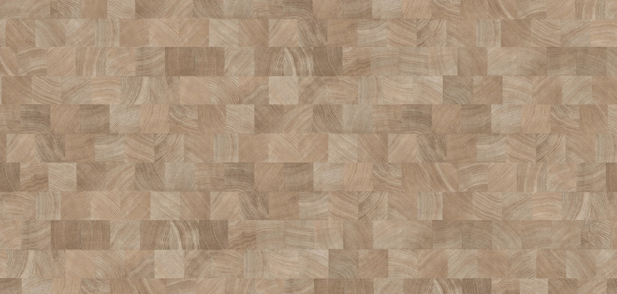 PARADOR Laminat Classic 1050 Eiche Hirnholz gekälkt Ölstruktur ohne Fuge Individuelle Dielenoptik – Bild 3