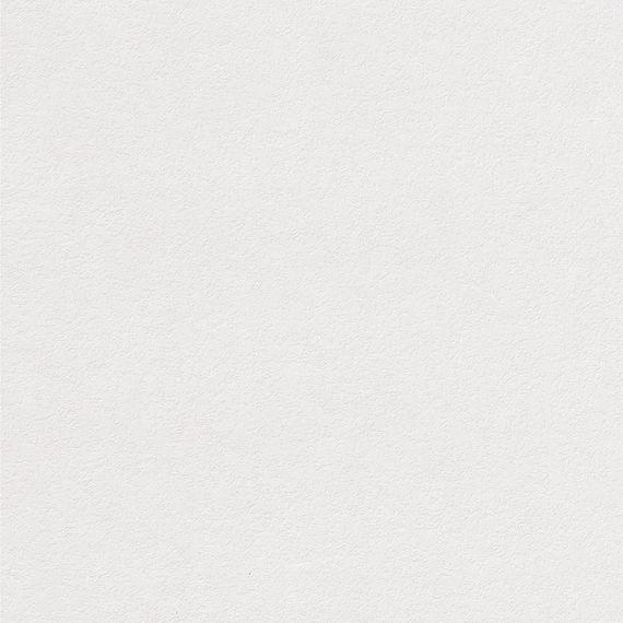 Parador Paneele Wand Decke ClickBoard Unbehandelt Struktur grundiert 1285 mm 1085197 ohne Fuge – Bild 1