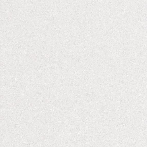 Parador Paneele Wand Decke ClickBoard Unbehandelt Struktur grundiert 2585 mm 1085198 geschlossener Gesamteindruck – Bild 1