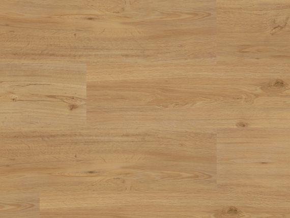PARADOR Klebe-Vinyl Vollvinyl Basic 2.0 Eiche Natur Gebürstete Struktur Klebevinyl Feuchtraumgeeignet  – Bild 3